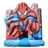 Tobogã Pula-Pula com Escorregador do Aranha -3m x 7m x 3,3m